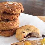 Chocolate Chip, Coconut, & Raisin Cookies [Grain Free, Gluten Free, Dairy Free, Nut free]